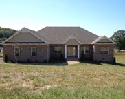 1455 Cliff Amos Rd, Spring Hill image