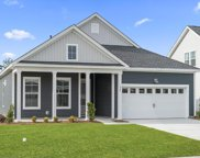 239 Yellow Rail St., Murrells Inlet image