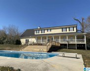 4844 Pleasant Valley Road, Odenville image