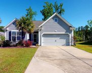 601 Blue Daisy Ct., Loris image