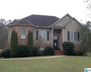 440 Turkey Trail Rd, Odenville image