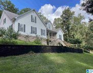 111 Pump House Road, Odenville image