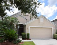 14247 Cattle Egret Place, Lakewood Ranch image
