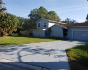 13802 Cherry Creek Drive, Tampa image