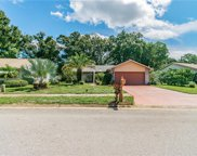 1643 E Dorchester Court, Palm Harbor image