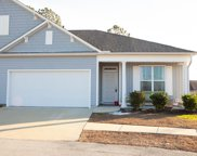 5037 Shade Tree Terrace, Leland image