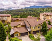 106 Cougar Ridge Rd NW Unit 1703, Issaquah image