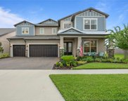 18715 Birchwood Groves Drive, Lutz image