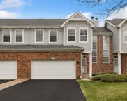 131 Chestnut Hills Circle, Burr Ridge image