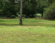 218 Putney Ct., Conway image