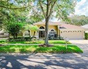 3603 Cypress Meadows Road, Tampa image