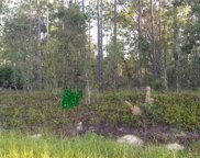 Sw 89th Street, Dunnellon image