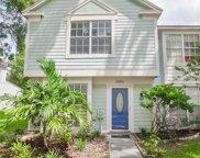 13841 Fletchers Mill Drive, Tampa image