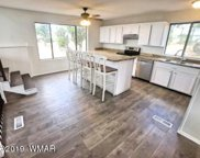 3660 Green Forest Drive, Overgaard image