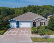 31321 Driscoll Drive, Wesley Chapel image
