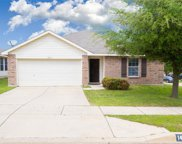 14157 Cochise Drive, Fort Worth image
