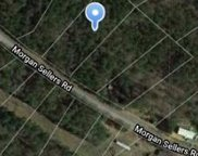 1646 Morgan Sellers  Road, Wadesboro image