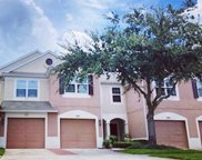 26615 Castleview Way, Wesley Chapel image