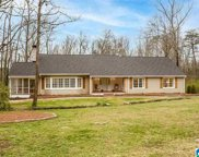 3131 Old Ivy Rd, Irondale image