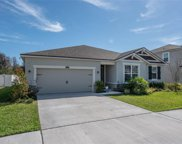 12215 Streambed Drive, Riverview image