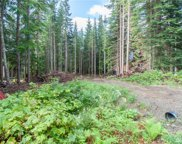 0 Lot 5 Mountain Home Rd, Snoqualmie Pass image