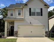 117 Bickley Manor Court, Chapin image