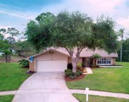 1703 Aberdeen Court, Palm Harbor image