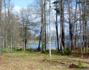 124 Sassafras Blvd (Lot 63), Ninety Six image