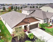 11351 American Holly Drive, Riverview image