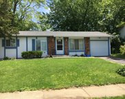 148 Pacific Drive, Bolingbrook image