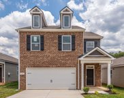 7515 Cash Crossing Ct, Antioch image