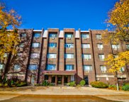 4624 N Commons Drive Unit #211E, Chicago image