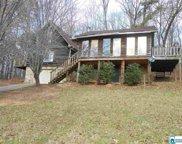 897 Cedar Cliff Rd, Springville image