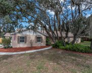 12504 Wexford Hills Road, Riverview image