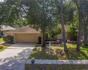 3515 Fairway Forest Drive, Palm Harbor image