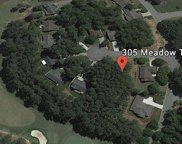 305 Meadow Tree Court, Travelers Rest image