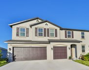 11719 Tetrafin Drive, Riverview image