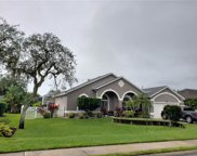 730 Aldenwood Trail, New Smyrna Beach image