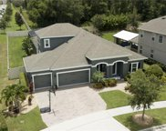 15973 Black Hickory Drive, Winter Garden image