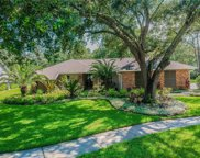 5203 Dwire Court, Tampa image