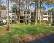 102 Wilderness Way Unit A-243, Naples image