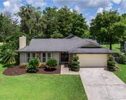 8619 Port Sudan Court, Orlando image