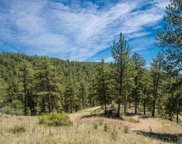 14433 Lot 3 Elk Creek Road, Pine image
