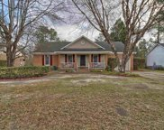 66 Camp Creek Drive, Elgin image