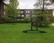 1290 North Western Avenue Unit 301, Lake Forest image