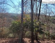 TBD Cozy Cabin Circle, Piney Creek image
