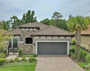 8543 Grand Alberato Road, Tampa image