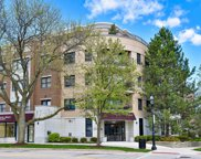 586 Crescent Boulevard Unit #303, Glen Ellyn image