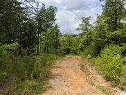 Sycamore St Lot 48, Sevierville image