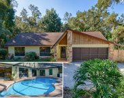 21230 Orange Ct, Mount Dora image